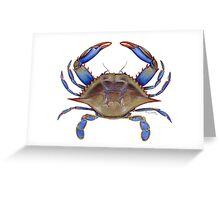 Blue Crab (Callinectus sapidus) Greeting Card