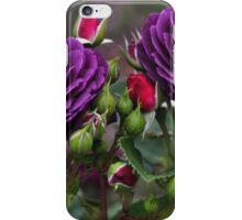 魅力 - (Enchantment) iPhone Case/Skin