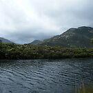 tidal river by lilleesa78