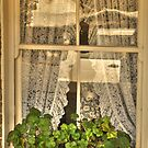 Window Lace by Elaine Teague