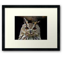 Owl #2 Framed Print