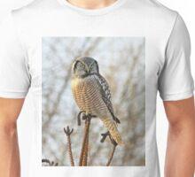 Precarious perch Unisex T-Shirt