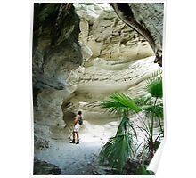 Carnarvon Gorge Queensland Poster