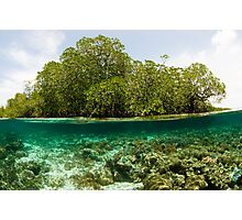 Raja Ampat Mangroves Photographic Print