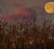 Harvest Moon by enchantedImages