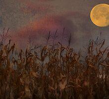 Harvest Moon by enchantedImages