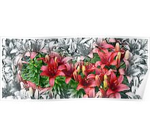 Transitioning Red Flowers  Poster