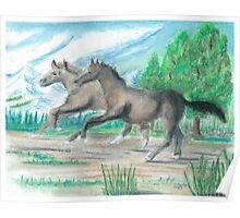 Horses  -oilpastels Poster