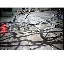 Steel Veins Photographic Print