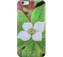 Emerald of the Forest iPhone Case/Skin