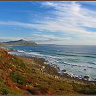Cape of Good Hope by Jackie Barefield