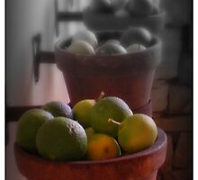 Limes in a row by Jackie Barefield