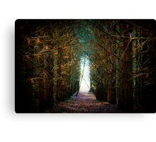Enchanted Kingdom Canvas Print