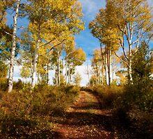 Autumn in Zion by Hugh Smith