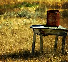 Rusty Bucket by pat gamwell