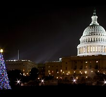 Washington DC - US Capitol Building by bkphoto