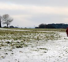 A walk on Beverley Westwood by Jon Tait