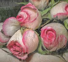 Roses... by Patriciakb