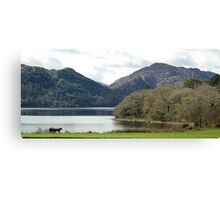 Muckross, Co. Kerry Canvas Print