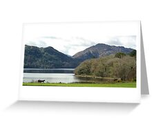 Muckross, Co. Kerry Greeting Card