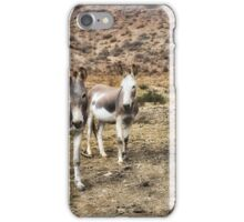 Burros at Punta China iPhone Case/Skin