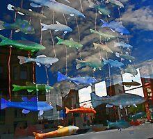 reflection in store window by Lynne Prestebak