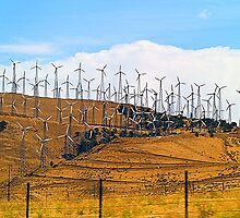 Windmill Farm of California by Memaa