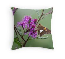 Brown Beauty on Purple Flower Throw Pillow