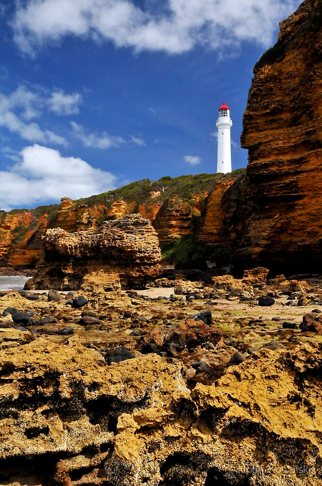 Split Point Lighthouse by John  Kowalski