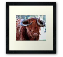 Do you like my Curls? Framed Print