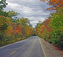 Burnt Swamp Road by AntonLee