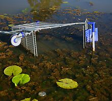 Dumped Trolley by Peter Roberts