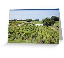 Lakeside Vines Greeting Card