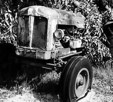 OLD FORDSON MAJOR 1956 by Marinapallett