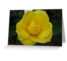 With Fond Admiration Rose Greeting Card