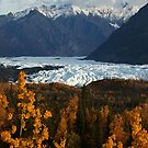 STOCK ~ Fall Surrounds Matanuska Glacier ~ Chugach Mountains  by Rick & Deb Larson