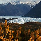 STOCK ~ Fall Surrounds Matanuska Glacier ~ Chugach Mountains  by akaurora