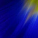 Blue Iris by Kitsmumma