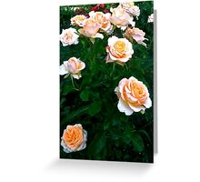 Peach Pink Rose Bunch Greeting Card