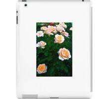 Peach Pink Rose Bunch iPad Case/Skin