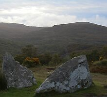 Ring of Kerry Landscape by Shane Field