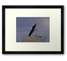 Spirit In The Sky Framed Print