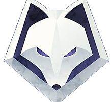 WINTERFOX by billybob28