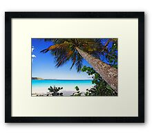 Leaning Palm Tree on a Tropical Beach Framed Print