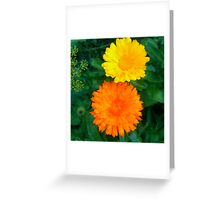 Yellow & Orange Sunshine Floral Greeting Card