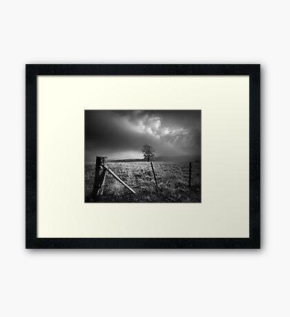 Chosen Field Framed Print