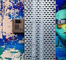 The Wall by Joslin Hartley