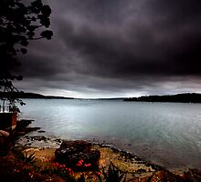 Stormy View From Shark Island Sydney by MiImages