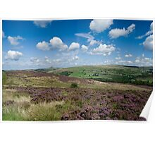 Moorland view Poster