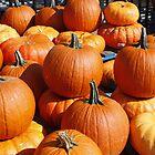 Pumpkin Time by AnnDixon